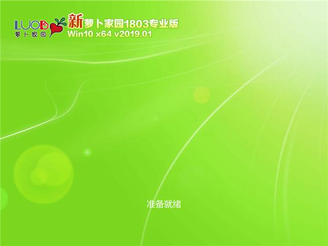 萝卜家园 Win10专业版 64位 V2019.01